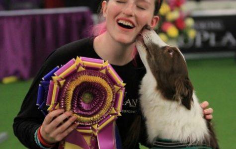 UMass sophomore's border collie wins dog show