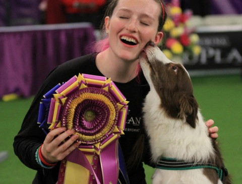 Courtesy of Westminster Kennel Club