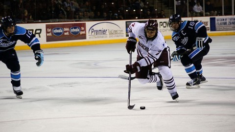 Former UMass hockey standout Michael Pereira seizes opportunity in unexpected AHL debut weekend