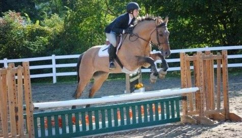 Equestrian team's season continues to regionals