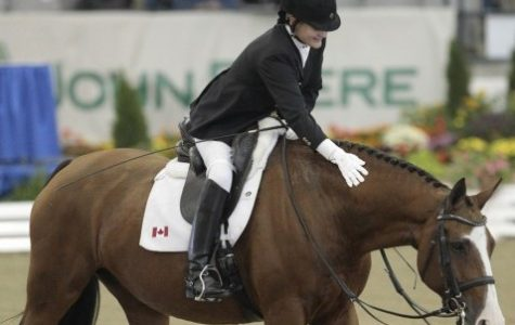 UMass Dressage Team discusses the lesser-known sport