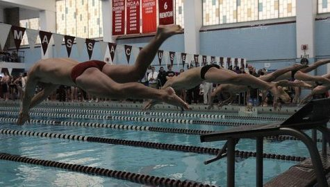 UMass men's and women's swimming and diving fall to Army