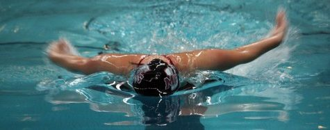 Conference championship returns to Amherst for UMass men's swimming and diving