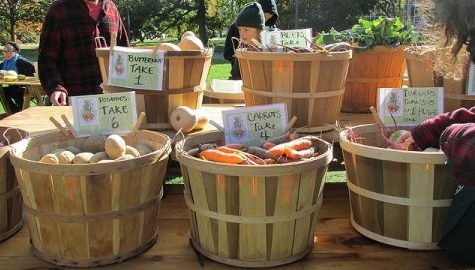 UMass Farmer's Market provides fresh food and fun every Friday