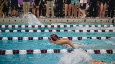 Swimming prepares for Stony Brook