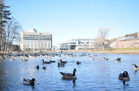 University awarded $20,000 campus climate change grant