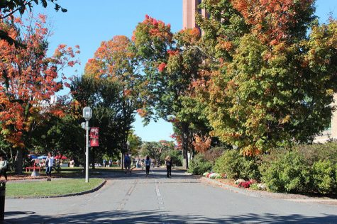 UMass Majors Fair to be held Wednesday