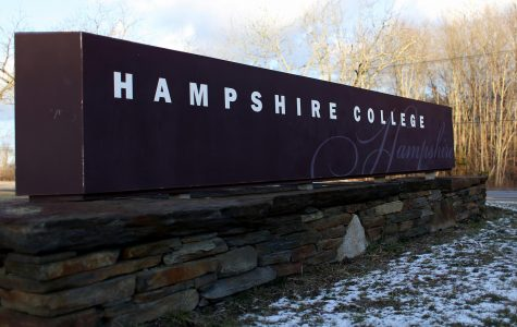 Miriam Nelson named new president of Hampshire College