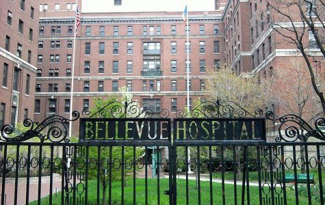 Lecture discusses NYC's Bellevue Hospital