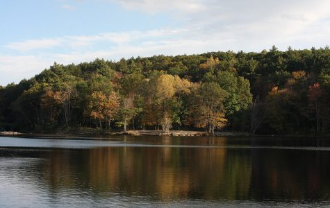 Search underway for body at Puffer's Pond