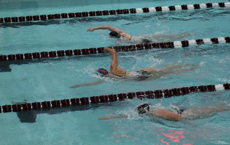 Swimming and diving teams fall to BU