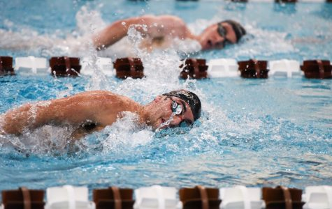 Swimming and Diving seniors prepare for season's final meet