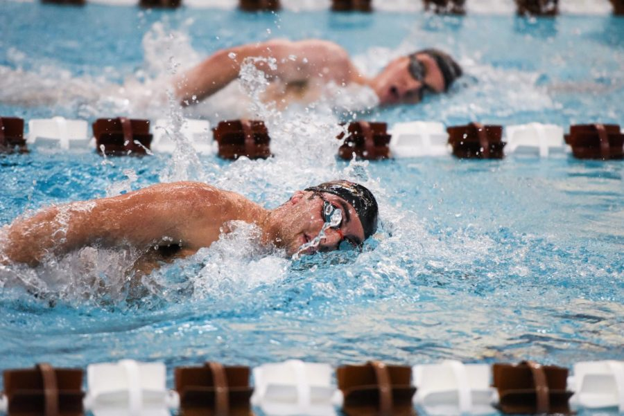 Swimming+and+Diving+seniors+prepare+for+season%E2%80%99s+final+meet
