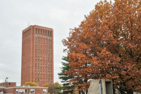 UMass Libraries celebrates Public Domain Day