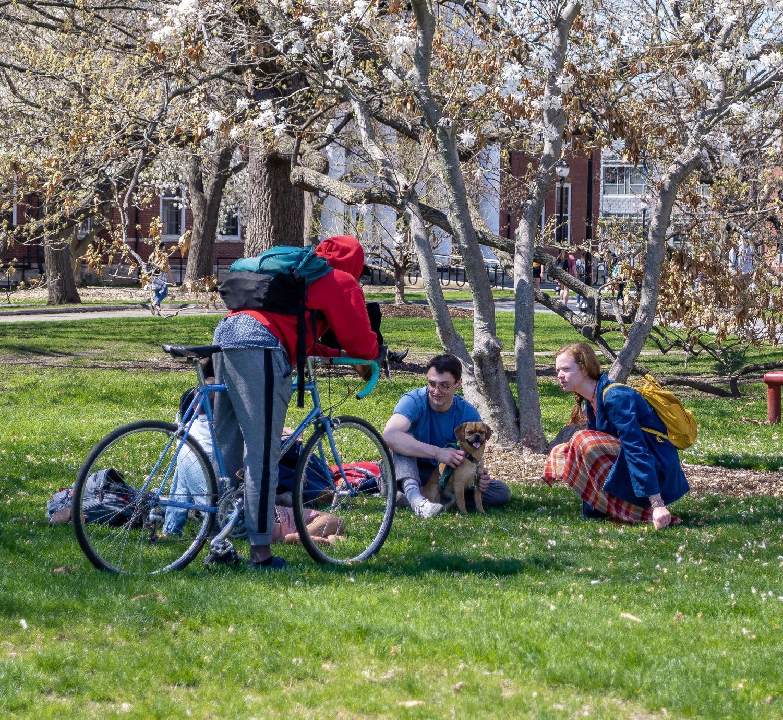 GALLERY: Best of April 2019 – Massachusetts Daily Collegian