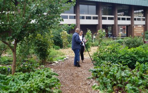 UMass Permaculture Gardens available online in 360-degree view