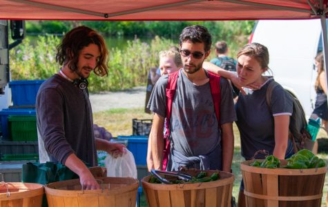 UMass Student Farmers Market features produce, art, clothing and more