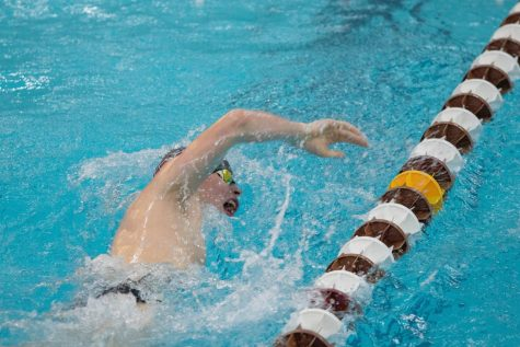 Men's and women's swimming & diving team both fall this weekend