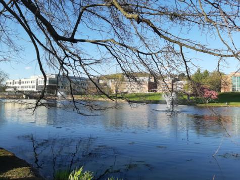Bhavya Pant - Campus Pond